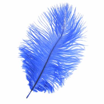 Feder Blau - 17.5 cm