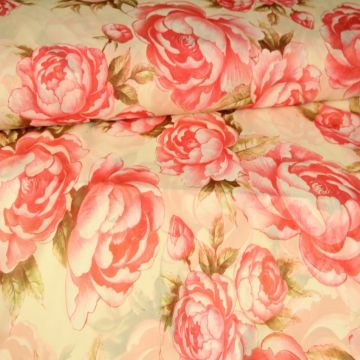 Sweet Mexican Roses