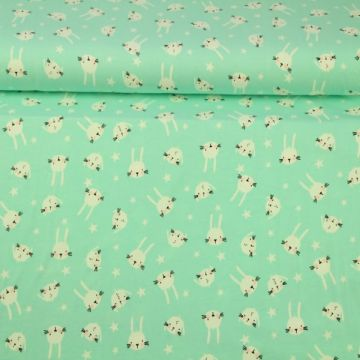 Baumwolle Jersey - Bunny and Stars